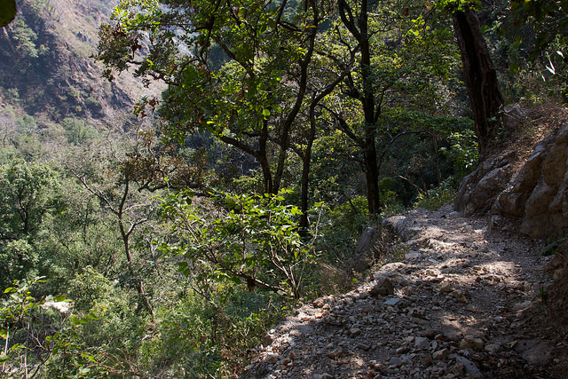 Hiking . Rishikesh India