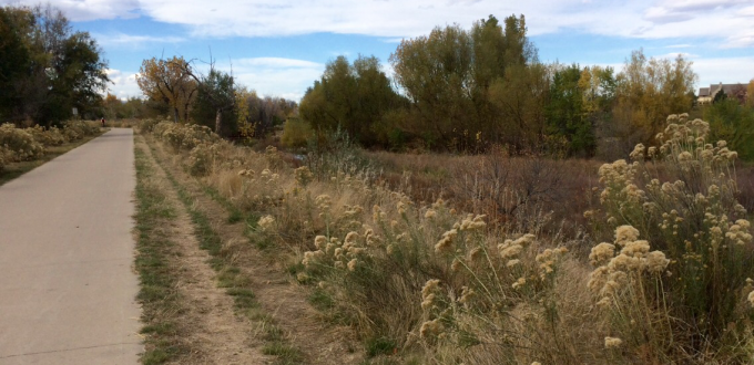 Cherry Creek Trail