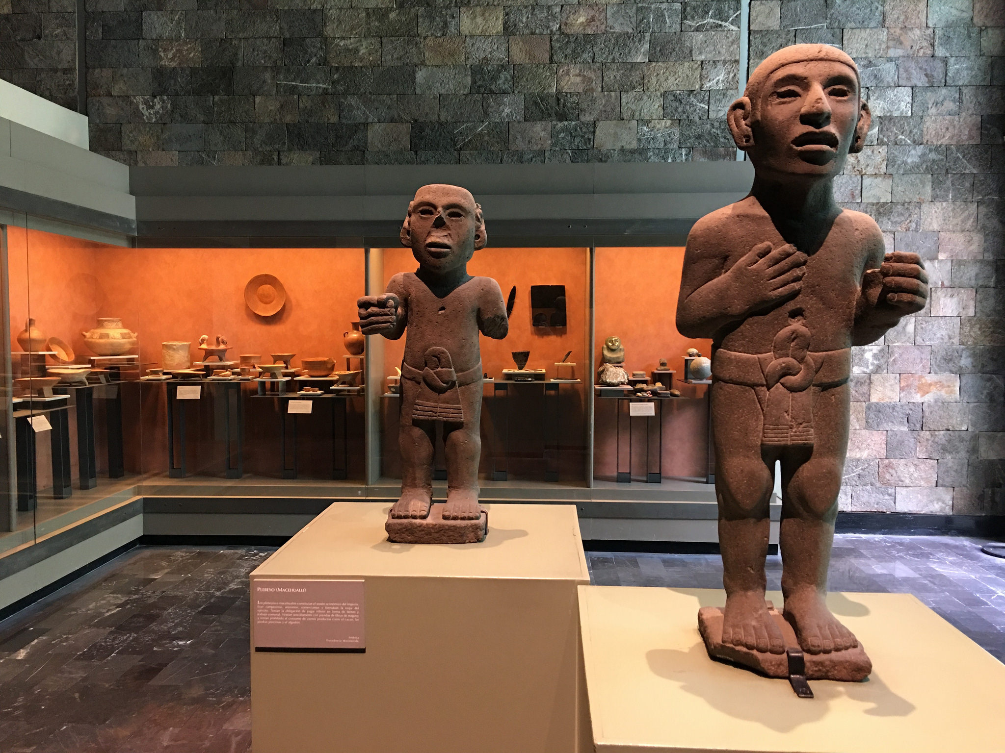 Museum of Anthropology . Mexico City