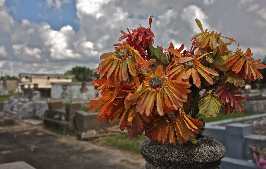 Carrollton Cemetery . New Orleans